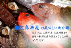 佐島漁港の美味しい魚介類